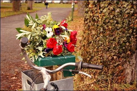http://la.petite.fleur.violette.cowblog.fr/images/Nouveauxarticles/bouquet.jpg
